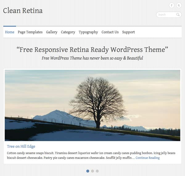 clean retina wordpress theme