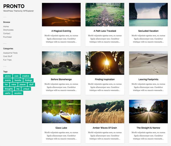 pronto wordpress theme